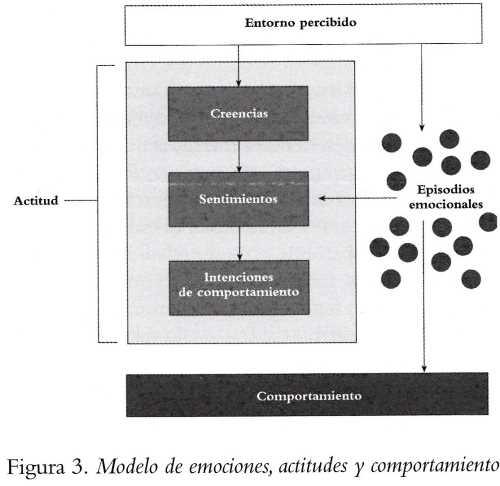 Emociones y actitudes en el trabajo Liderazgo y Recursos Humanos